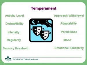 list of temperament traits