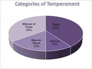 pie chart showing percentages