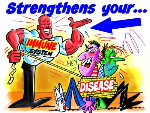 Immune system wins over disease
