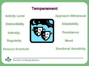 list of temperament traits