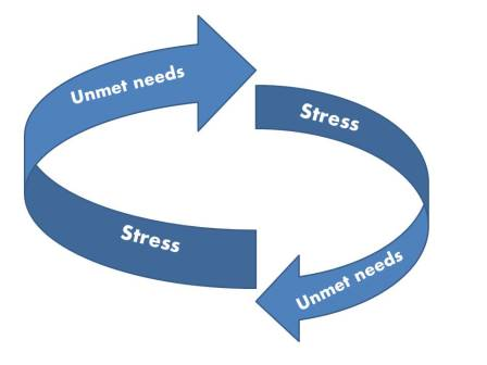 cycle of stress and unmet needs