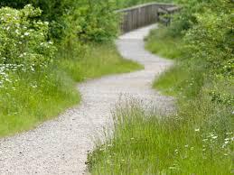 a curvey path